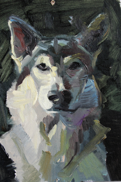Jose Sanchez Peinado_Oil painter_Wolf
